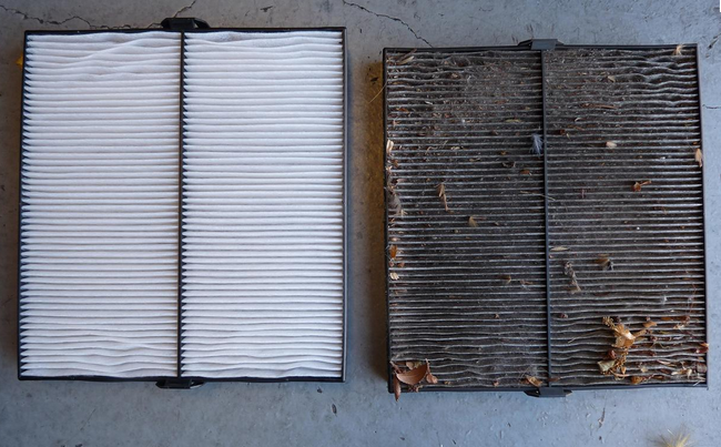 Cabin and Air Filters